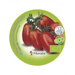 Plantel de tomate Pera Mata Baja ecológico (12 unidades)