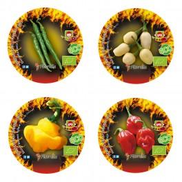 Pack 3 pimientos picantes variados (maceta 10,5 cm Ø)