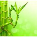 Caña de bambú espiral