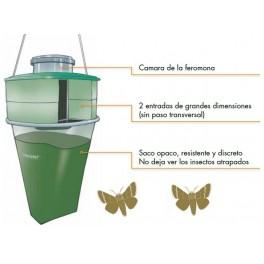 Trampa Procerex mosca procesionaria