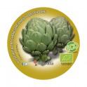 Plantel de alcachofa ecológica (6 unidades)