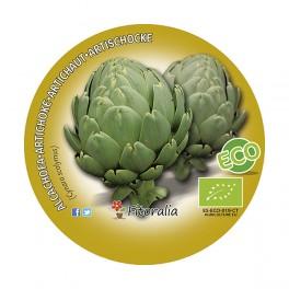 Plantel de alcachofa Victoria (4 unidades)
