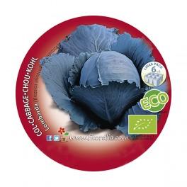 Plantel col Lombarda ecológica (6 unidades)