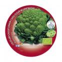 Plantel brócoli Romanescu ecológico (6 unidades)