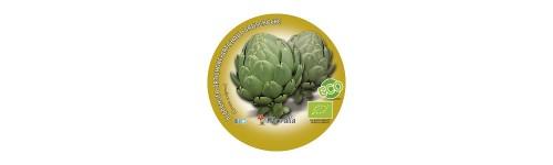 Plantel alcachofa